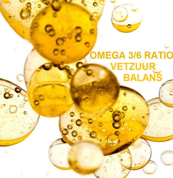 Omega 3 6 ratio vetzuurbalans test