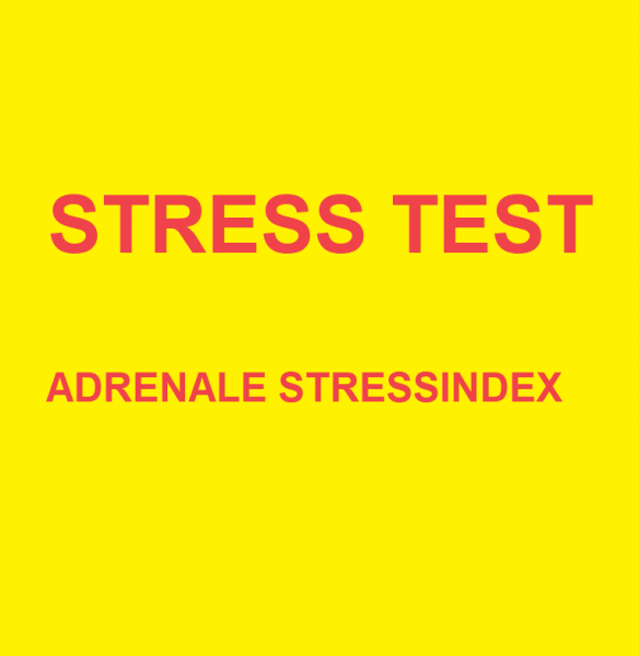 Stress test: Adrenale stress index DHEA + Cortisol dagprofiel